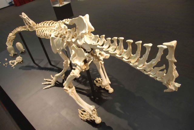 Humanosaur (63)